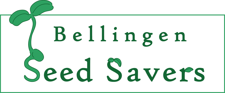 Bellingen Seed Savers